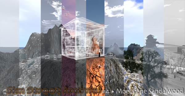 16-SSJ#4-moeuhane-landscape